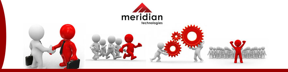 Advanced Purchasing Analyst Jobs in Raleigh, NC - Meridian Technologies
