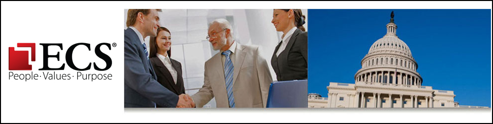 Senior IT Network/Security Engineer Jobs in Arlington, VA - ECS ...