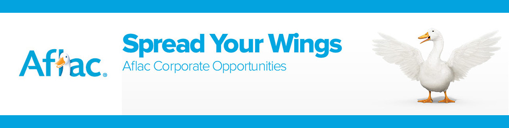 portfolio architect jobs in chicago, il - aflac - corporate