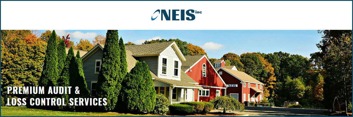 Insurance Loss Control Surveyor at NEIS, Inc.