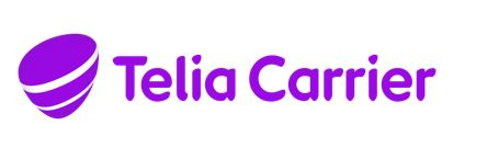 """Academic Work """"STUDENT WITHIN TELECOMMUNICATIONS TO TELIA CARRIER"""""""