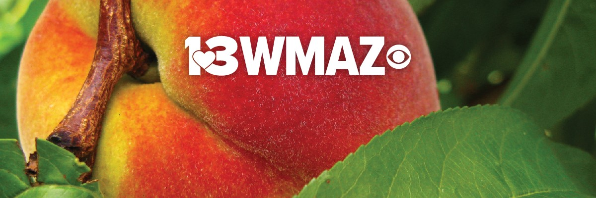 Multi-Skilled Journalist at WMAZ (13WMAZ)