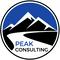 Peak Consulting
