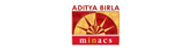 Aditya Birla Minacs Talent Network