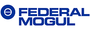 Federal-Mogul Corporation Talent Network