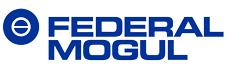 Offres d'emploi et carrière chez Federal-Mogul Corporation>
