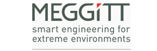 MEGGITT Talent Network