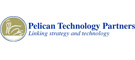 Pelican Technology Partners